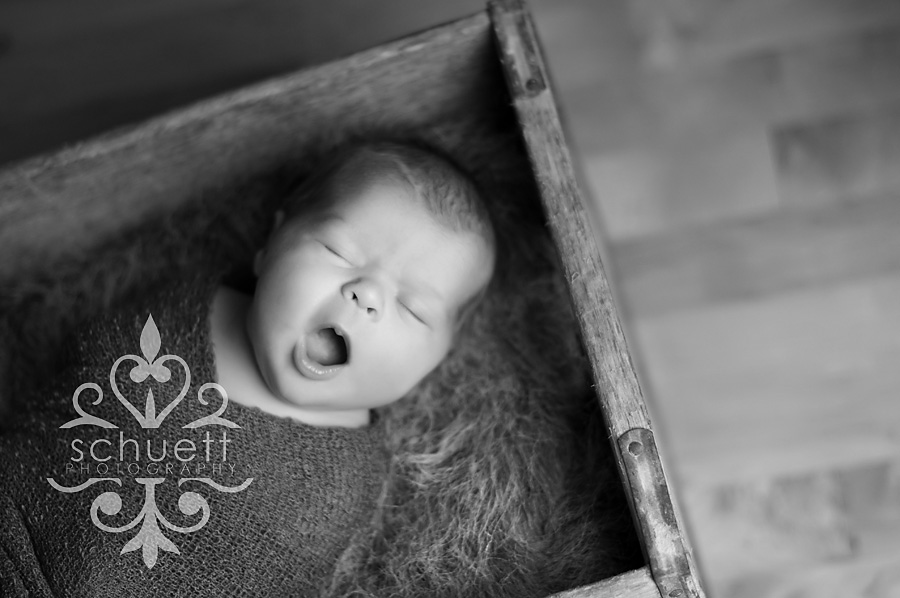 Big yawn Milwaukee newborn photography