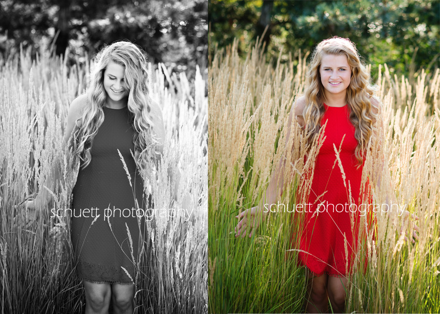 outdoor beautiful senior pictures tall flowing grass wheat grass milwaukee broookfield wisconsin